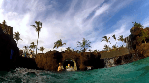 waterside and poolside fun in hawaii