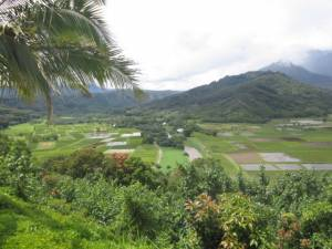 Beautiful view from Hanalei Lookout